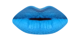 BlueMoonPZC(1).png